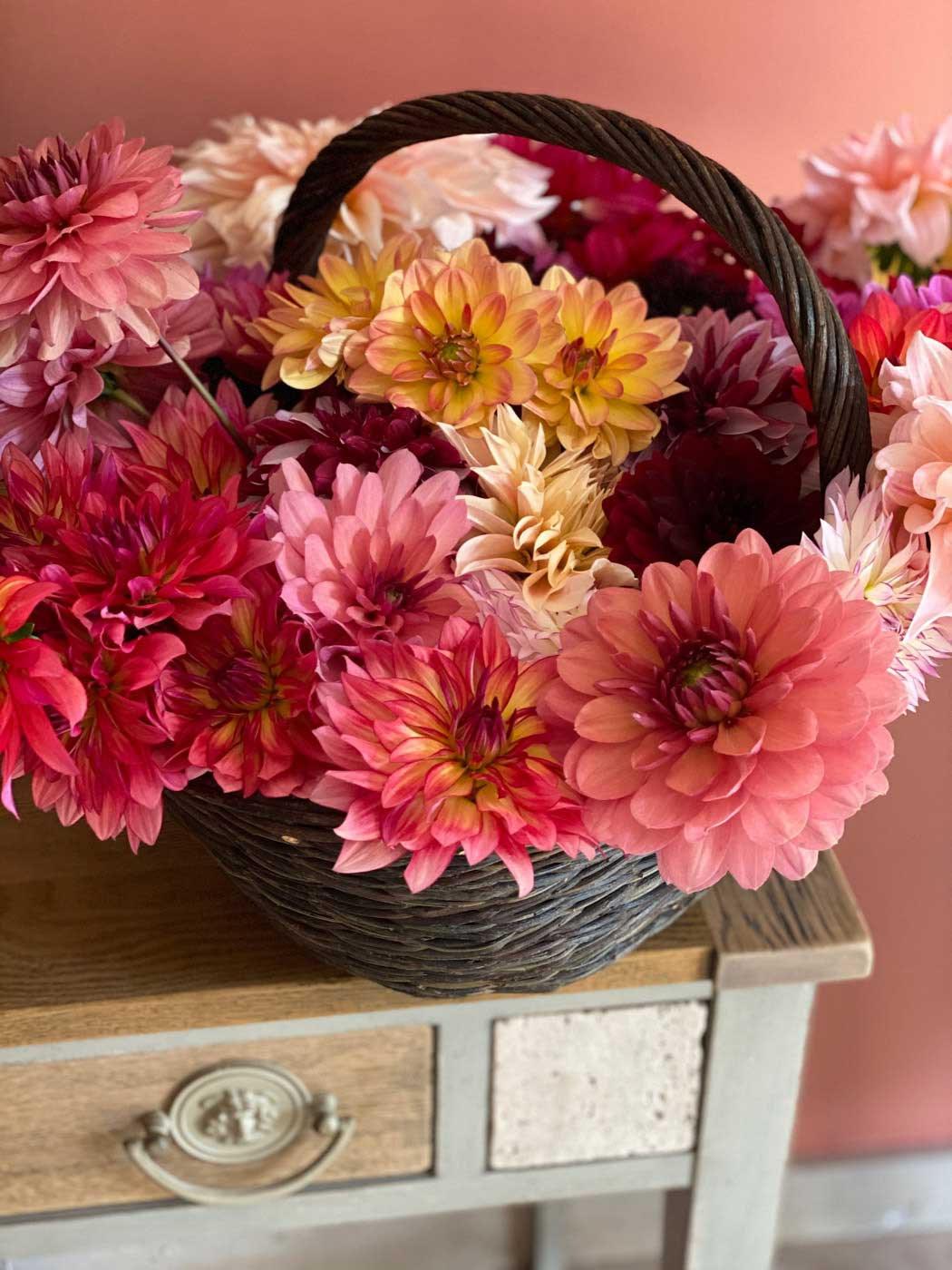 dahlias-fleurs-tuto-une-bonne-maison-19
