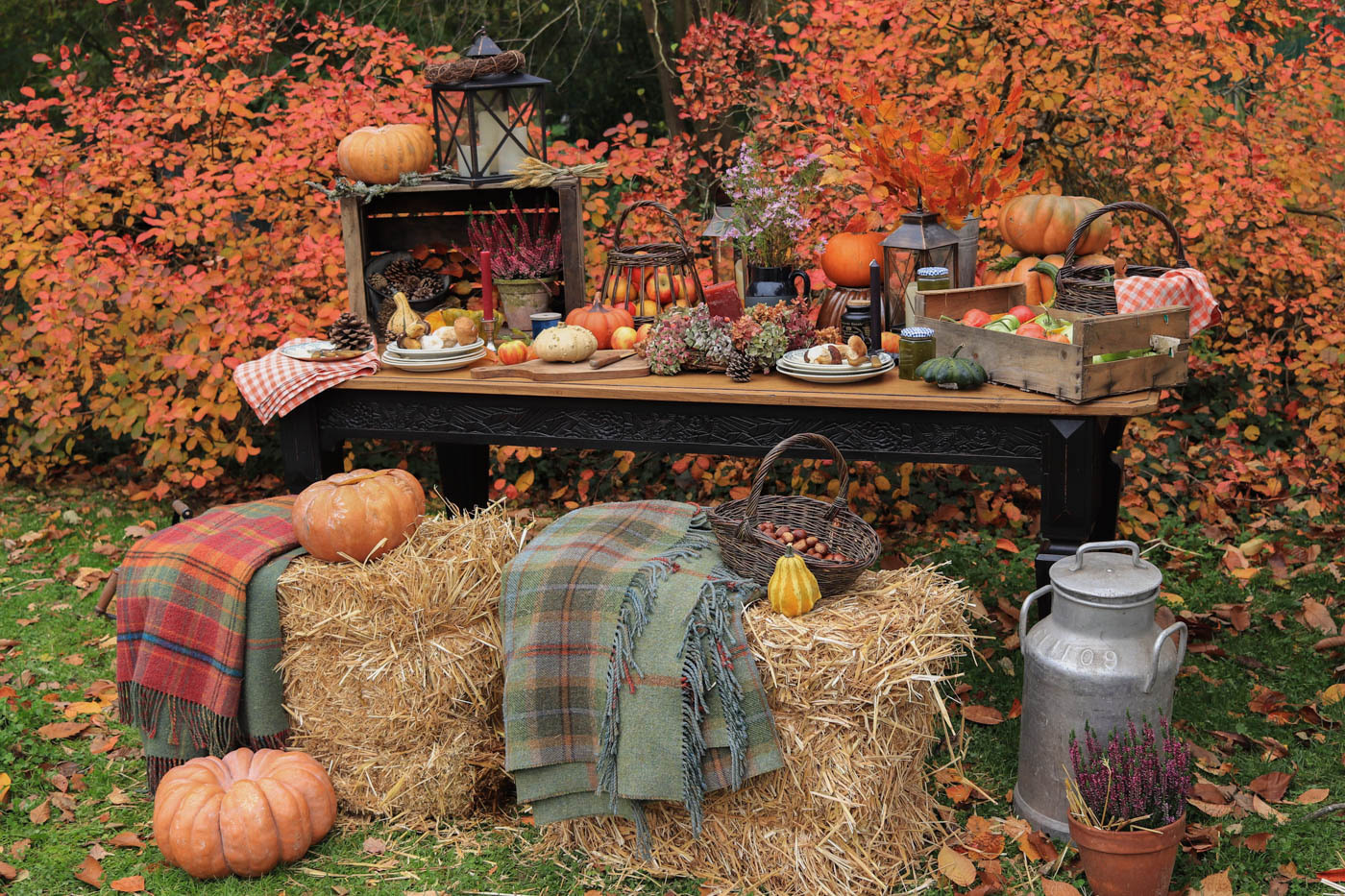 table-de-ferme-automne-decor-fall-farm-9