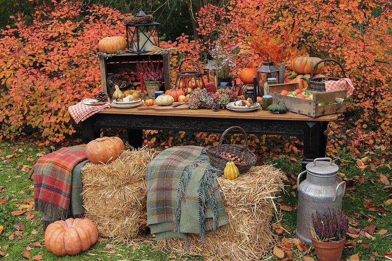 table-de-ferme-automne-decor-fall-farm-9
