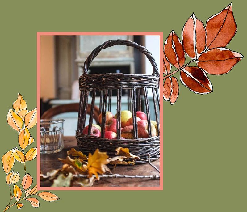 automne-blog-section-maison