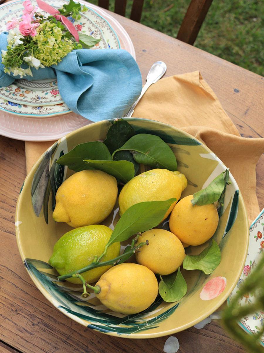 table-champetre-cage-oiseaux-campagne-citrons-lemons