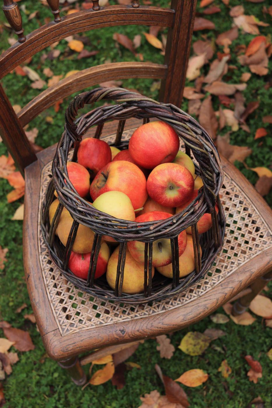 table-de-ferme-automne-decor-fall-farm-pommes